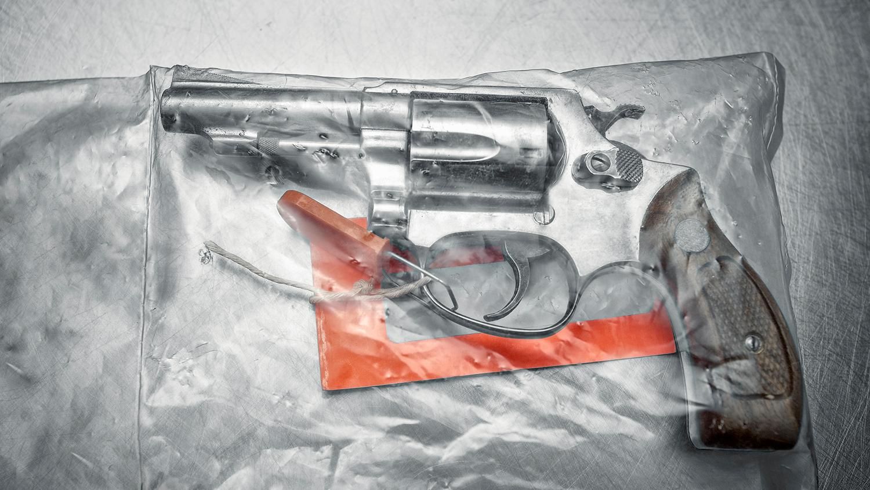 Firearm Registration + Bureaucratic Incompetence = Seizure of Innocent Veteran's Guns in New York- Naples Gun Shop & School ffl transfers sales